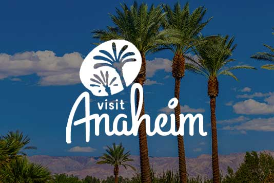visit Anaheim DMO co-op marketing example